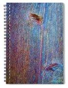Knotty Plank #2b Spiral Notebook