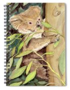 Koala Bear Spiral Notebook
