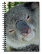 Koala Face Spiral Notebook