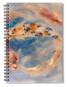 Koi Circle Spiral Notebook