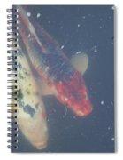 Koi Cousins Spiral Notebook