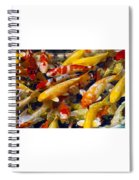 Koi Pond 2 Spiral Notebook