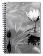 Koi Pond With Lily Pad Flower And Bud Black And White Spiral Notebook