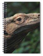 Komodo-7399 Spiral Notebook