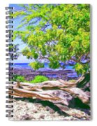 Kona Coast Spiral Notebook