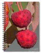 Kousa Dogwood Fruit Spiral Notebook