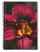Kwanzo Spiral Notebook