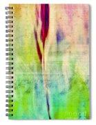L Epi - S14at01 Spiral Notebook