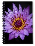L I L Y Spiral Notebook