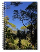 jungle in La Amistad National Park Panama 1 Spiral Notebook