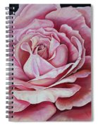 La Bella Rosa Spiral Notebook