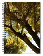 La Boca Ranch Cottonwood Spiral Notebook
