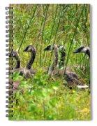 La Familia Spiral Notebook