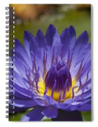 La Fleur De Lotus - Star Of Zanzibar Tropical Water Lily Spiral Notebook