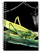 La Locusta E Il Secchio Spiral Notebook