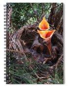 Laaaaaaaaaa Spiral Notebook