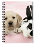 Lab Puppy And Bunny Spiral Notebook