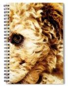 Labradoodle Dog Art - Sharon Cummings Spiral Notebook