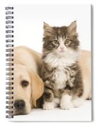 Labrador And Forest Cat Spiral Notebook