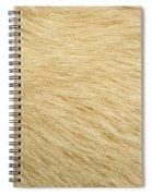 Labrador Coat Spiral Notebook