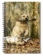 Labrador Jumping With Stick Spiral Notebook