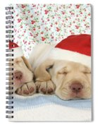 Labrador Puppy Dogs Wearing Christmas Spiral Notebook