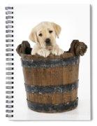 Labrador Puppy In Bucket Spiral Notebook