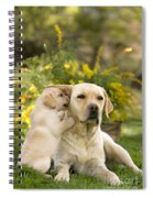 Labrador Puppy Playing With Parent Spiral Notebook
