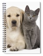 Labrador Puppy With Chartreux Kitten Spiral Notebook