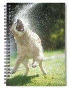 Labrador Retriever And Hose Spiral Notebook