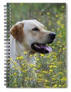 Labrador Retriever Dog Spiral Notebook
