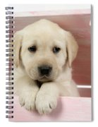 Labrador Retriever Puppy Spiral Notebook