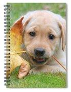 Labrador Retriever Puppy With Autumn Leaf Spiral Notebook