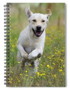 Labrador Running Spiral Notebook