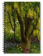 Laburnum Tree In Bloom Spiral Notebook