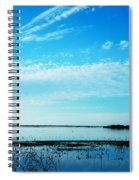 Lacassine Pool Louisiana Afternoon Spiral Notebook