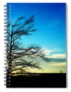 Lacassine Tree Spiral Notebook