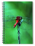 Lace Wings Spiral Notebook