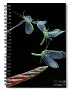 Lacewing Taking Off Spiral Notebook