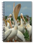 Lacrosse Spiral Notebook