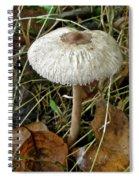 Lacy Parasol Mushroom Spiral Notebook