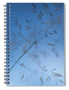 Lacy Patterns Of Grass Spiral Notebook