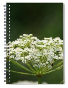 Lacy White Spiral Notebook