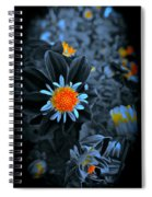 Ladies Gold Spiral Notebook