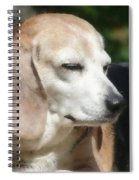 Lady 12 Spiral Notebook