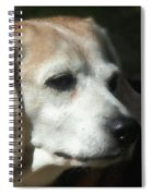 Lady 15 Spiral Notebook