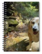 Lady 17 Spiral Notebook