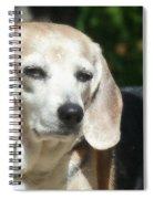 Lady 19  Spiral Notebook