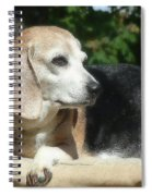 Lady 21 Spiral Notebook