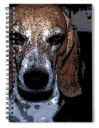 Lady 3 Spiral Notebook